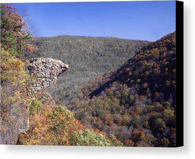 Hawksbill Crag Canvas Print featuring the photograph Hawksbill Crag by Curtis J Neeley Jr