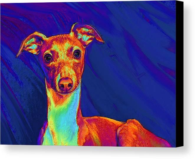 Greyhound Canvas Print featuring the digital art Italian Greyhound by Jane Schnetlage