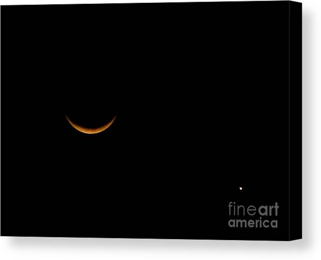 Moon Canvas Print featuring the photograph Moon And Venus by PJ Cloud