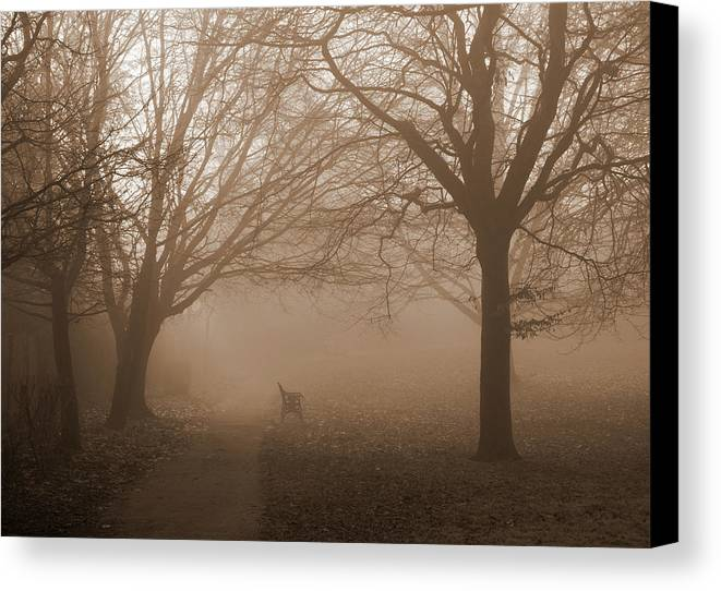 Photo Art Canvas Print featuring the photograph One Foggy Morning by Judi Saunders