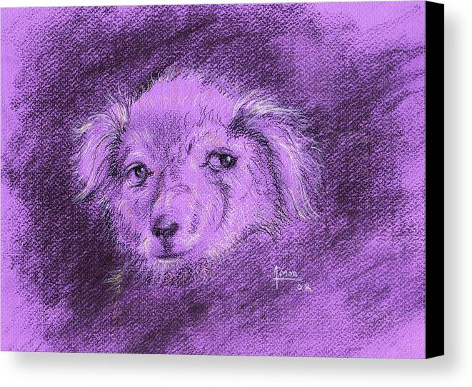 Dog Canvas Print featuring the drawing Perro Electrico 1 by Victor Amor
