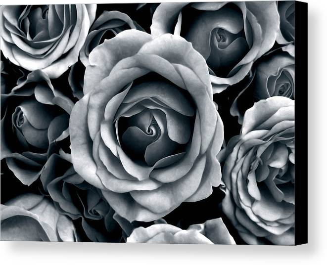 Flower Canvas Print featuring the photograph Rose Tones by Jessica Jenney