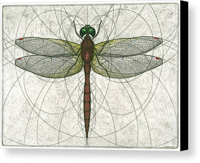 Ruby Canvas Print featuring the painting Ruby Meadowhawk Dragonfly by Charles Harden