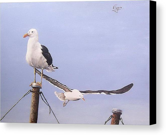 Seascape Gulls Bird Sea Canvas Print featuring the painting Seagulls by Natalia Tejera