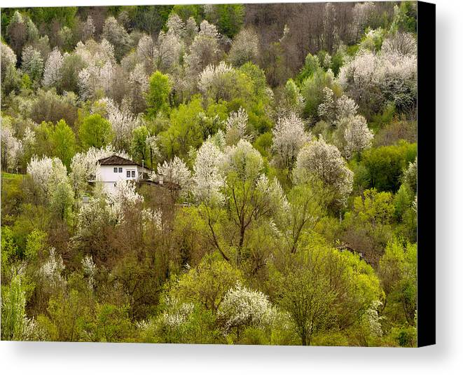 House Canvas Print featuring the photograph The House by Tsoncho Balkandjiev