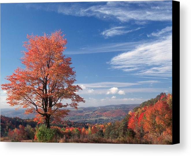 Fall Canvas Print featuring the photograph Top Of The World by Raju Alagawadi