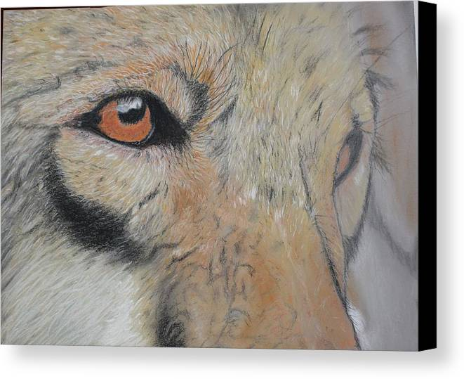 Wolf Canvas Print featuring the pastel Wolf's Gaze by Peter Graore