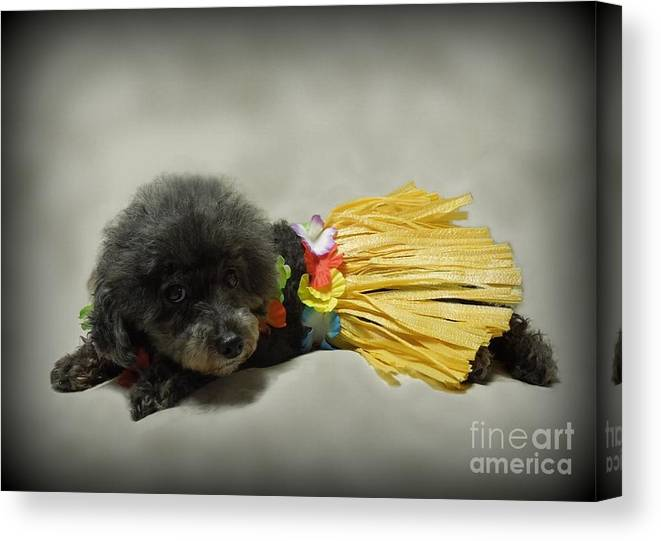 Hula Dance Canvas Prints (Page #6 of 13) | Fine Art America