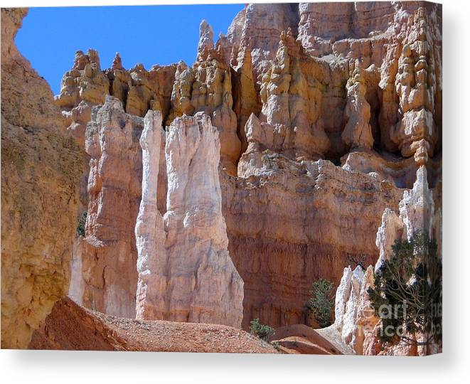 Hoodoo Canvas Print featuring the photograph Bryce Canyon Beauty by Barbie Corbett-Newmin