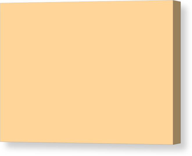 Abstract Canvas Print featuring the digital art C.1.255-213-153.7x5 by Gareth Lewis