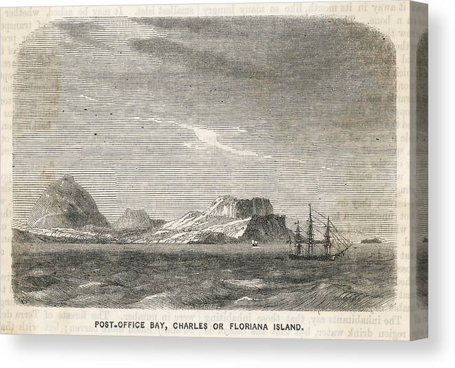Galapagos Canvas Print featuring the drawing Charles (or Santa Maria/ Floriana) by Mary Evans Picture Library