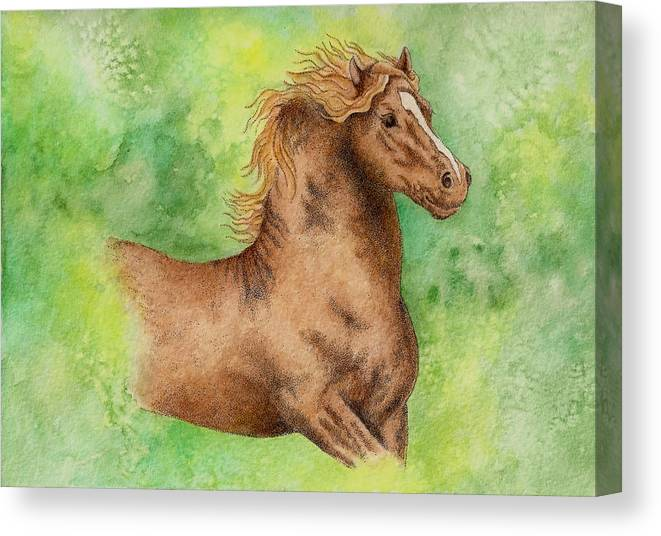 Watercolor Canvas Print featuring the painting Green by Jodi Bauter