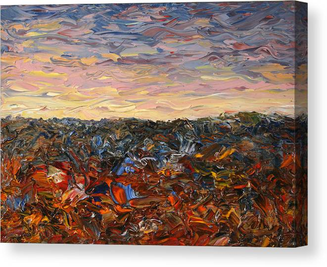 Landscape Canvas Print featuring the painting Land And Sky 2 by James W Johnson
