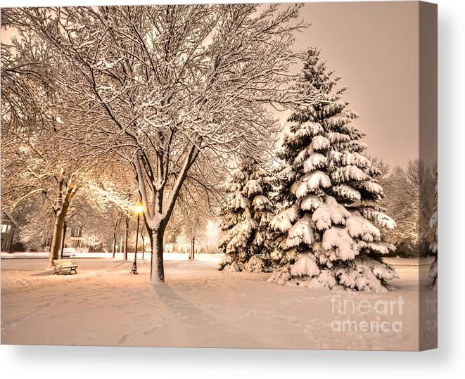 Winona Canvas Print featuring the photograph Snowy Night At Windom Park by Kari Yearous