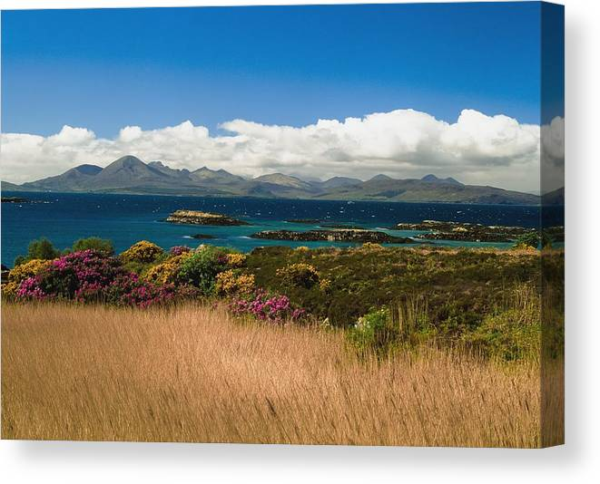 Horizontal Canvas Print featuring the photograph Gorse And Rhododendron Bushes by Axiom Photographic