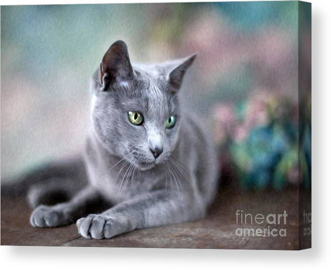 Cat Canvas Print featuring the painting Russian Blue by Nailia Schwarz