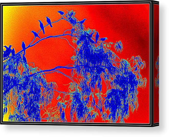 Crows Crows And Crows Canvas Print featuring the photograph Crowes Crowes And Crows by Anand Swaroop Manchiraju