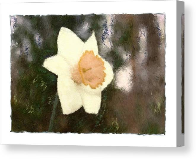 Abstract Canvas Print featuring the photograph Daffodil by Sandy Belk