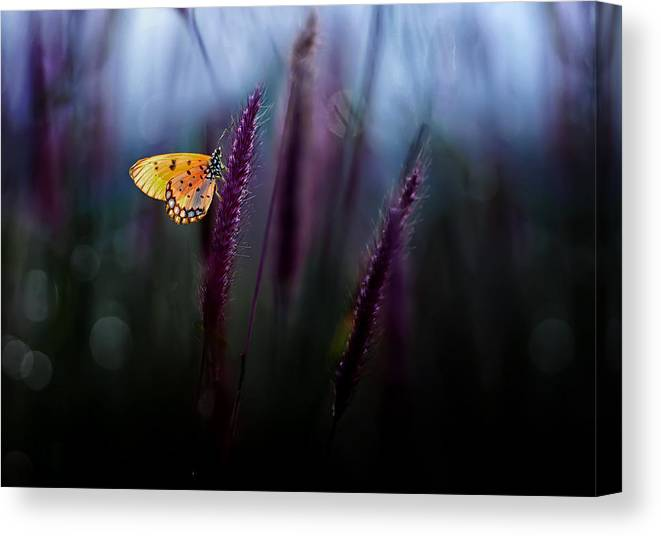 Macro Canvas Print featuring the photograph Hope by Erwin Astro