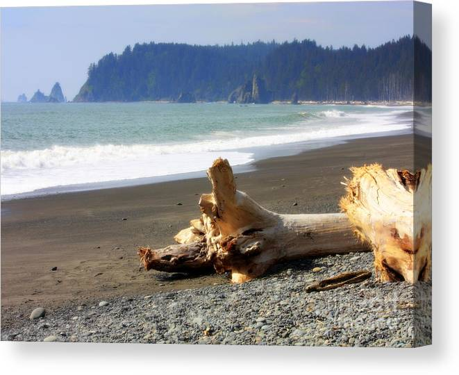 Washington State Canvas Print featuring the photograph La Push Beach by Carol Groenen