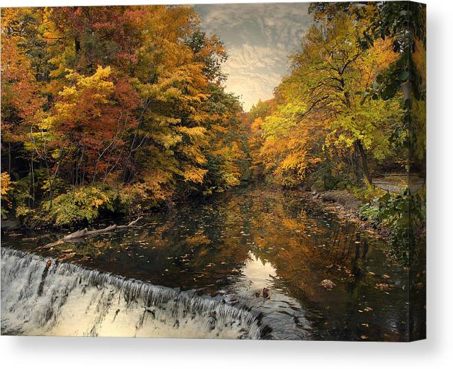Nature Canvas Print featuring the photograph Leaf Peeping by Jessica Jenney
