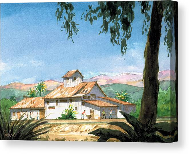 Landmark In Carpinteria Canvas Print featuring the painting Lima Bean Plant by Ray Cole