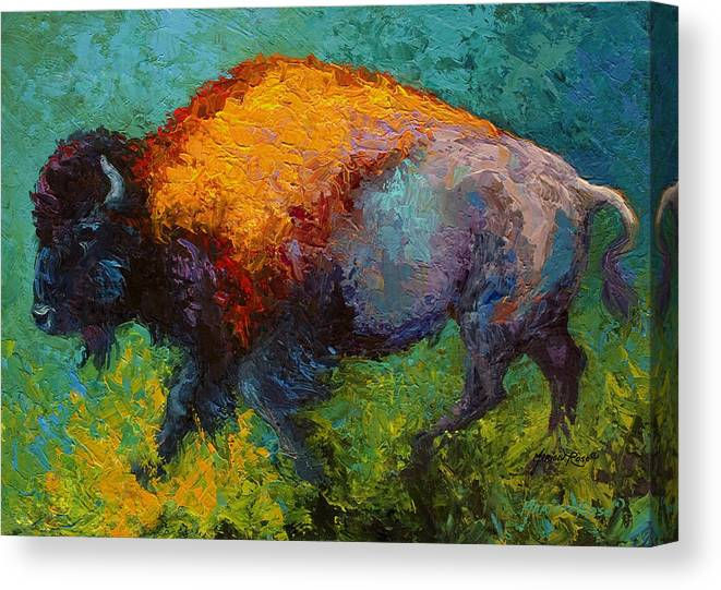 Bison Canvas Print featuring the painting On The Run by Marion Rose