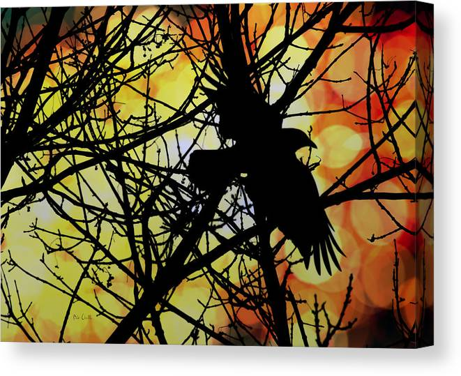 Raven Canvas Print featuring the photograph Raven by Bob Orsillo