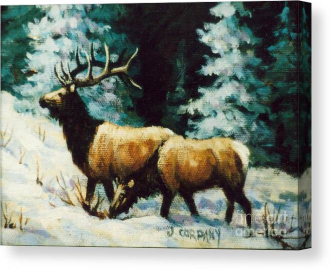 Elk Canvas Print featuring the painting Snow Elk by JoAnne Corpany