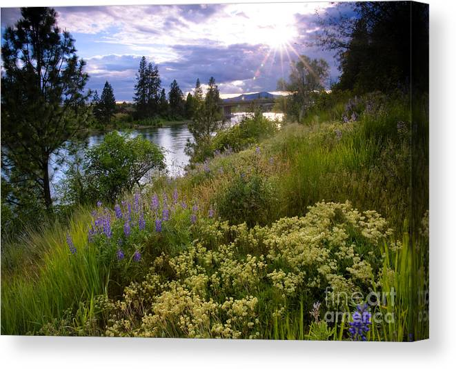 Landscape Canvas Print featuring the photograph Spokane River Wildflowers by Idaho Scenic Images Linda Lantzy
