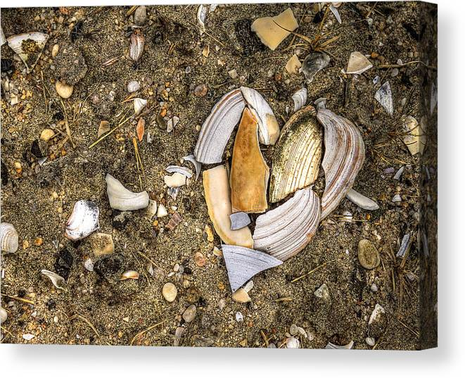Beach Canvas Print featuring the photograph Unbreak My Heart by Evelina Kremsdorf