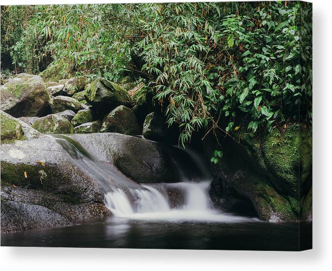 Beautiful Canvas Print featuring the photograph Zen Stream In Forest by Alexandre Rotenberg