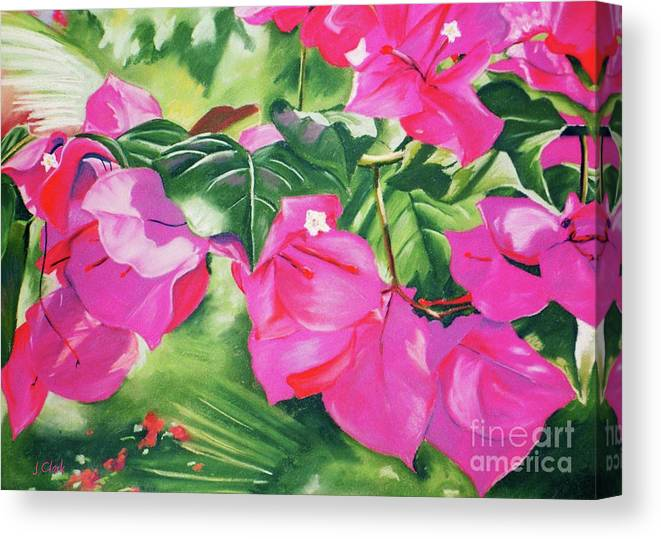Art Canvas Print featuring the painting Bougainvillea by John Clark