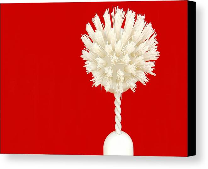 Brush Canvas Print featuring the photograph Scrub Brush by Dan Holm
