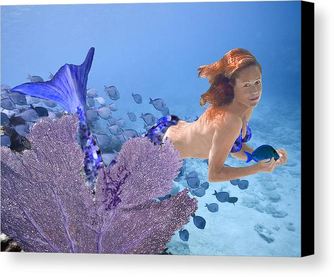 Mermaid Canvas Print featuring the photograph Blue Mermaid by Paula Porterfield-Izzo