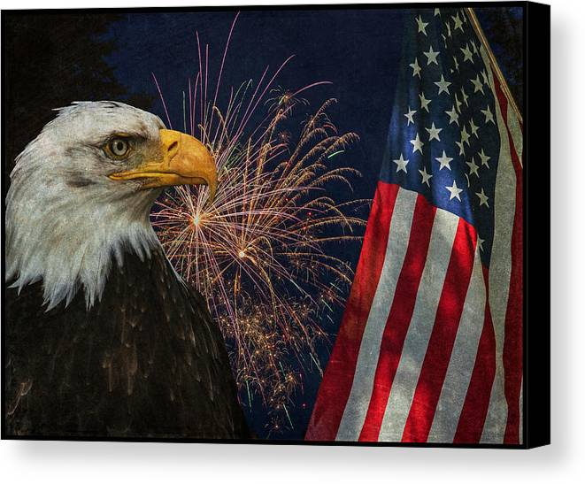 Independence Day Canvas Print featuring the photograph Independence Day by Angie Vogel