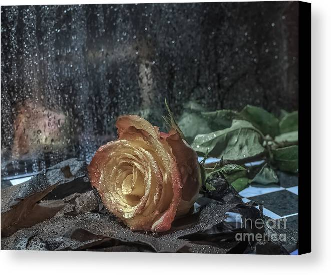 Loss Canvas Print featuring the photograph Loss by Lyudmila Prokopenko