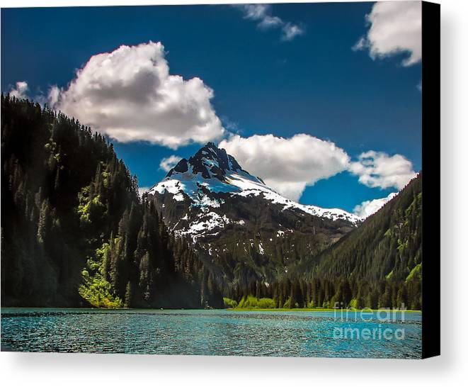 Alaska Canvas Print featuring the photograph Mountain View by Robert Bales