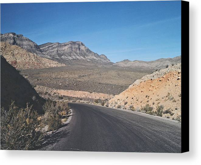 Cactus Canvas Print featuring the photograph Road In Desert by Larry Marano