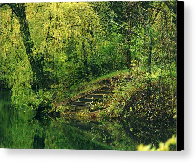 Photograph Canvas Print featuring the photograph The Stairway by Laura Stretz