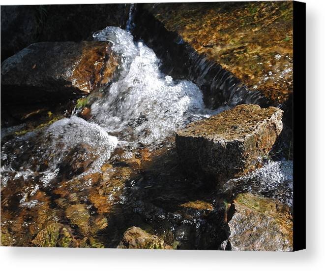 Landscape Canvas Print featuring the photograph Babbling Brook V by Chris Riley