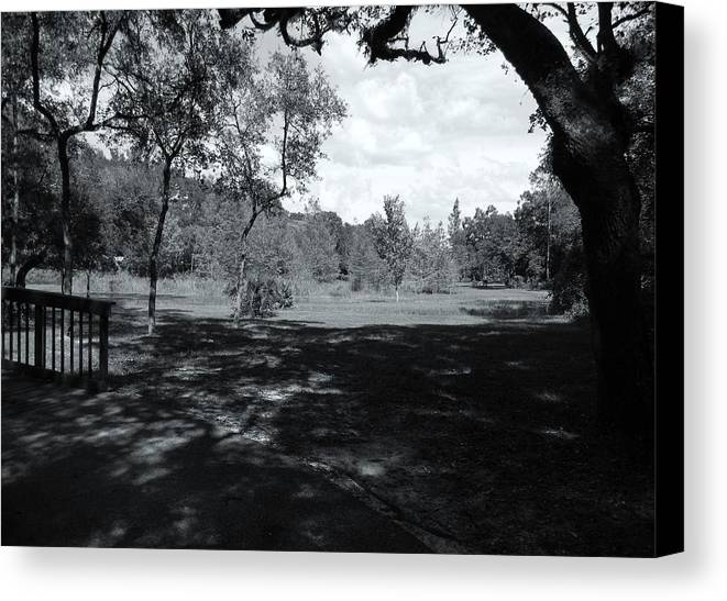 Memorial Trail Canvas Print featuring the photograph Memorial Trail by Warren Thompson
