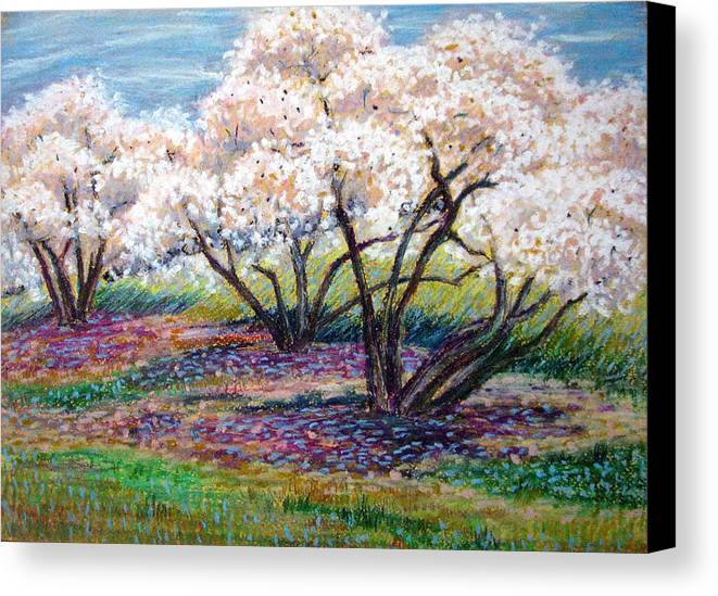 Oil Pastel Canvas Print featuring the painting Spring Has Sprung by Art Nomad Sandra Hansen