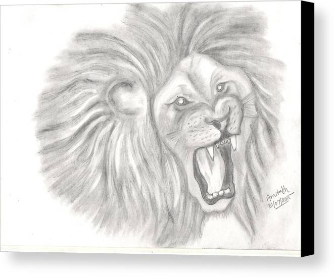 Wildlife Animal Canvas Print featuring the drawing Pencil Sketch by Amitabh Shrivastava