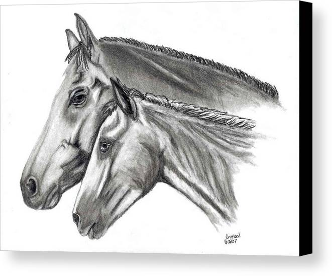 Charcoal Canvas Print featuring the drawing Aj And Candy by Crystal Suppes