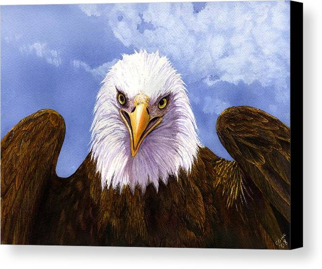 Eagle Canvas Print featuring the painting Bald Eagle by Catherine G McElroy