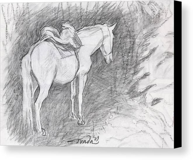 Horse Canvas Print featuring the drawing Beast Of Burden by Horacio Prada