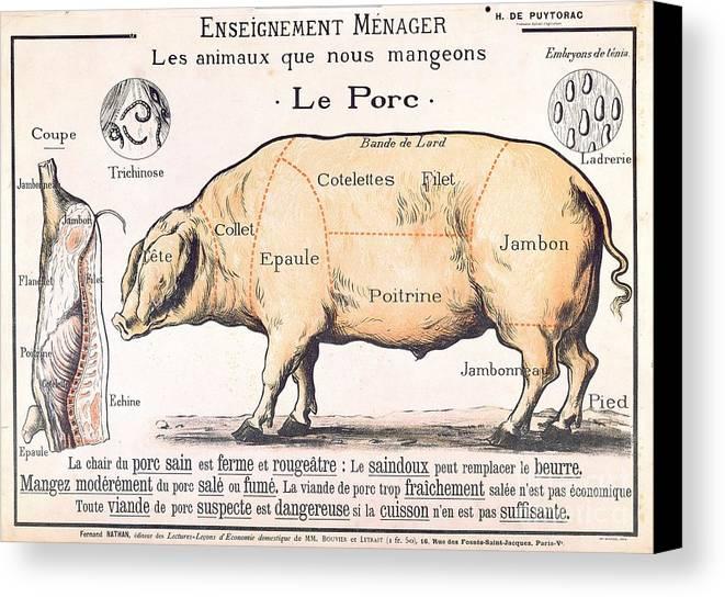 Cuts Of Pork Canvas Print Canvas Art By French School