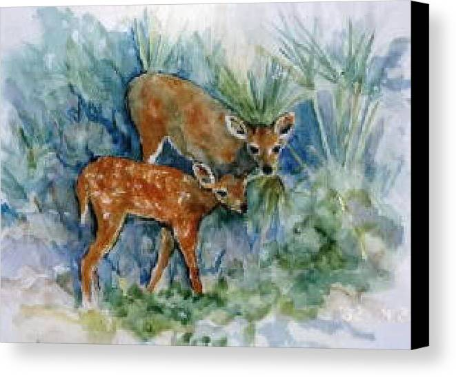 Deer Canvas Print featuring the painting Key Deer by Ruth Mabee