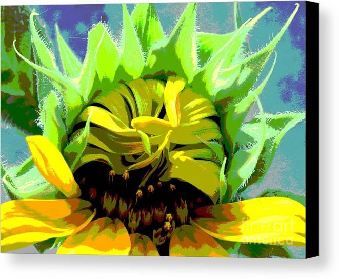 Sunflowers Canvas Print featuring the photograph Morning Awakening by Lori Mellen-Pagliaro